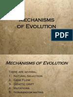 Mechanisms of Evolution.ppt