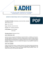 ICF - REPORT.pdf