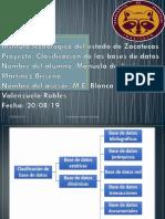CLASIFICACION DE LA BASE DE DATOS.pdf