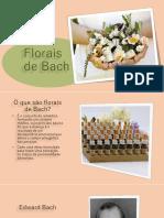 Estou compartilhando o arquivo 'Florais de Bach prof Denise' com você