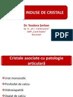Artrite induse de cristale - Teodora Șerban v. 2