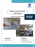 Rapport du stage LABOBTP.pdf