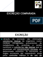 excrecao_comparada (1)