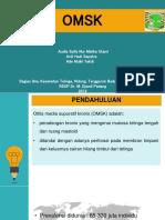 PPT CSS OMSK.pptx