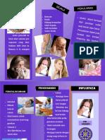 242247160 Leaflet Influenza