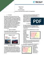 magmatismo lab.pdf