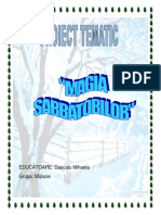 2_proiect_tematic_iarna.docx