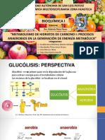 GLUCOLISIS-RX.pptx
