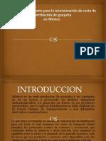 Modelo de transporte para la distribución de guayaba.pptx