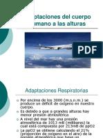 Adaptaciones_del_cuerpo_Humano_a_las_alturas.ppt