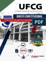 02. Teoria Geral dos Direitos e Garantias Fundamentais.pdf