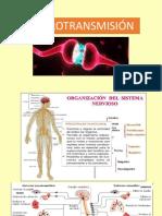 Neurotransmision..pptx