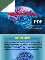 Definición, tareas y categorías , métodos de Neuropsicologia.pptx