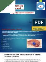 PSICOLOGIA GENERAL SEGUNDO APROVECHAMIENTO.pdf