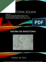 Rhizoctonia solani.pptx