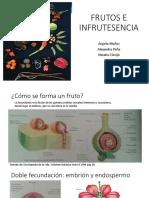 frutos2.pptx