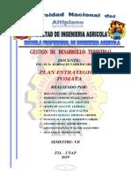 PLAN_ESTRATEGICO_DE_POMATA.docx