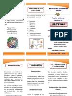 382649991-Triptico-Proteinas.pdf