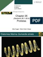 3-PROTISTAS.pdf