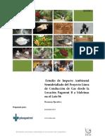 estudio de impacto - mañana.pdf