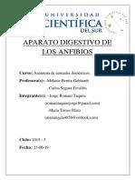 APARATO DIGESTIVO DEL SAPO.docx