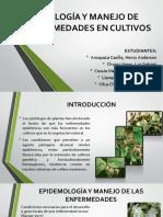 ECOLOGÍA Y MANEJO DE ENFERMEDADES EN CULTIVOS.pptx