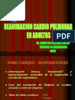 241022813-RCP-AVANZADO-ppt.ppt