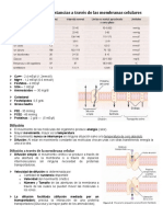 Cap 4, Transporte a través de las membranas celulares.doc