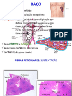 Aula_linfoide2.pdf