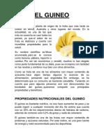 EL GUINEO.docx