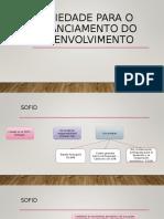 SOCIEDADE PARA O FINANCIAMENTO DO DESENVOLVIMENTO.ppt