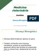 HERENAÇA HOMOGÊNICA.pdf
