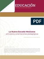 NEM principios y orientacioín pedagoígica.pdf