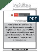 DS Reglamento 29080.pdf