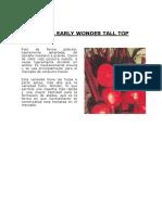 Cartilla Cultivo - Betarraga.pdf