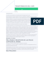PROCESO DE TRANSFORMACION DEL CUERO.docx