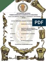 INFORME DE LA INDUSTRIA DEL CUERO ok.docx