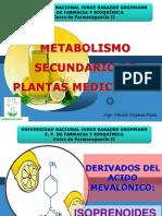 1-a-TERPENOS, ACEITES ESENCIALES 2017.pdf