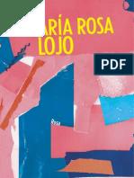 Rosa-María-Rosa-Lojo.pdf