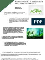 legislacion ambiental 2.pptx