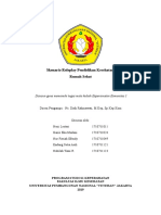 roleplay_rumah_sehat[1]fix.doc