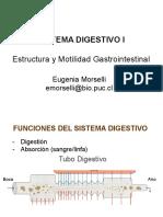DIGESTIVO+1.pdf