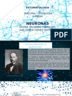 neuronas.pptm