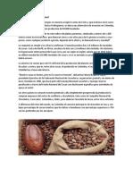 Estudio del mercado internacional del cacao.docx