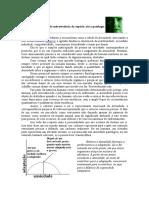 Ansiedade EXPLICAÇÃO.doc