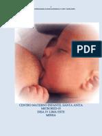 Lactancia Centro Materno