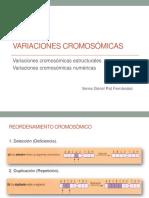 MUTACIONES EN LOS CROMOSOMAS.pptx