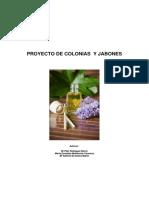 PROYECTO FINAL COLONIAS .pdf