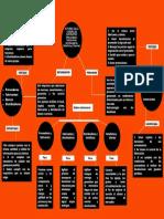 MAPA MENTAL ACTORES EN LA CADENA DE SUMINISTRO.pdf