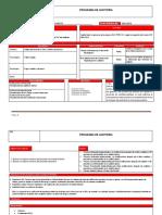 Programa-y-Plan-de-Auditoria DAC PERU.docx
